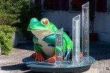 Frosch / Frog (77474)