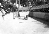 1940's - Gator Wrestling exhibition at the Musa Isle Indian Village