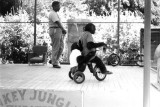 1963 - Monkeys performing on a tricycle at the Monkey Jungle