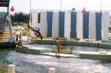 1970's - the Miami Seaquarium