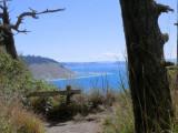 Partridge Point