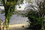 Loch Lomond from Balloch.