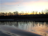 A Sunrise on the Rhine.   741