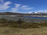 A Hardangervidda   649