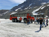 SNOW TRACTOR COACHES ON THE GLACIER