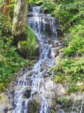 A SMALL WATERFALL   567