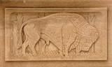 bison_detail_em.jpg