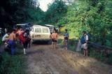 Agathis camp entrance.jpg