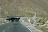 Tibetan-railway2.jpg