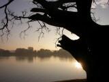 Pindaya sunrise.JPG