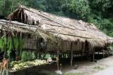 Aborigines hut.