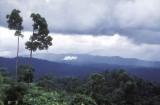 Maliau-Basin1.jpg