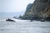 03-14 Edge of Tiburon