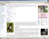 WYK adds a smoking dog to the Wiki Greyhound page