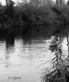 canoe party