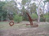 Kangeroo in the wood