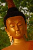 Napping Buddha