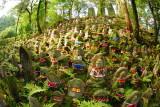 Sea of Buddhas