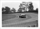 Auto Racing  &  Automobiles   Gallery 1