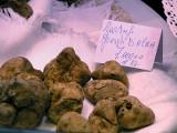 tartufi Truffles