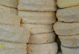 Cheese robiola