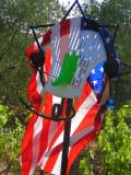 W America - Lady Liberty