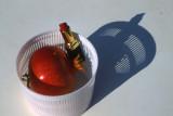 Lipstick&pomegranate