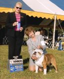 5 point Major Suffolk County Kennel Club Sept. 30th Mrs. Ruth H. Zimmerman