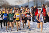2006 Canadian Cross-Country Championships