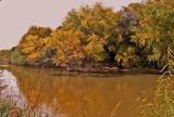 Fall Along Salado Creek.jpg