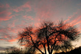 2-2-2007 Sunset 3.jpg