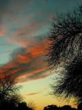 2-2--2007 Sunset.jpg