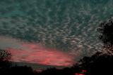 Fading Sunset.jpg