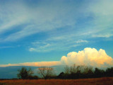Afternoon Clouds.jpg