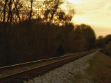 Railroad Tracks at Dusk