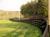 Winding Fence along Brush Creek Road.