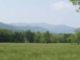 Smoky Mountains #2