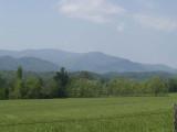 Smoky Mountains #3