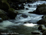 West Prong of the Little River, Tremont