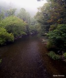 The Little River from a Swinging Bridge