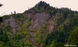 Landslide in The Smokys