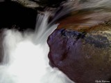 Stream at Chimneys Picnic Area