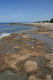 Rock pools just around the corner from Mar Blue