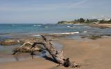 A short walk from Mar Blue