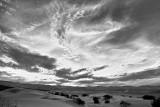 The Dunes I