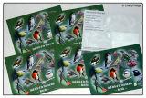 postcard design - small birds montage by Cheryl Ridge