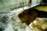 The Forgotten Pool