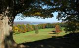 Vanderbilt View