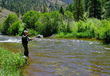 Don Fly Fishing