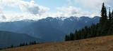 View from Hurricane Ridge